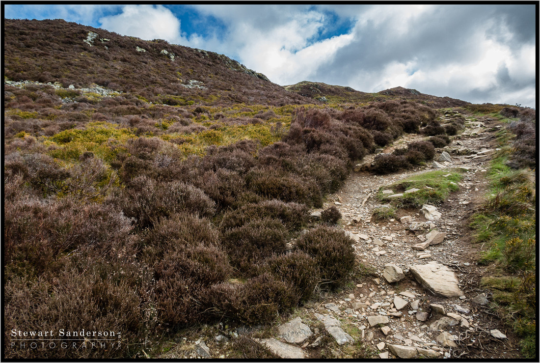 A hike in the Lake District up Barf, Lords Seat, Broom Fell, Graystones, Ling Fell and finally Sale Fell. A great day out pretty good weather and some great landscape Photography Images of the Lake District.